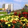 Ракетам нашли место в подъезде своего дома участники конкурса «Омские улицы»
