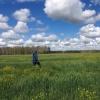 Заблудившаяся в Муромцевском лесу пожилая омичка найдена