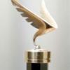 X Премия Белое крыло: приём заявок завершен