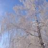 Сильные морозы приходят в Омск