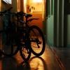 Двое рецидивистов украли в омском парке 4 велосипеда