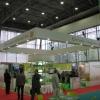 Омские выставки ждет акционирование