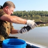 В омском регионе с каждым годом на 30% увеличивается улов рыбы
