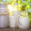 На молокозаводе в Называевском районе  обнаружена кишечная палочка