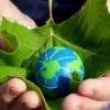 «Зеленая Россия» призывает выйти на всероссийский субботник