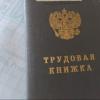 По утрате доверия в Омской области уволили 10 депутатов и одного врача