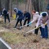 Для омской молодежи субботник превратят в open air