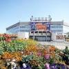 Главный цирк Омска был закрыт на реконструкцию