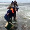 В Омской области спасли 14 рыбаков, провалившихся под лед озера