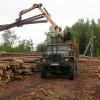В Омской области появится ресурсный центр по заготовке и переработке древесины