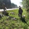 В Омской области продлена акция «Чистый лес»