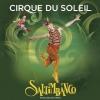 Уникальное шоу Saltimbanco от Цирка Солнца