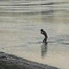 Несмотря на холод, омич искупался в Иртыше