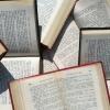 Омичка получила максимальный балл за ЕГЭ по литературе