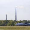 На военном аэродроме в Омске вырос целый лес