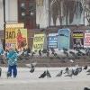 Омское УФАС забраковало рекламу массажных салонов, аптеки и фитнес-центра