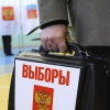 Выборы мэра отложат на неопределённый срок