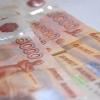 В Омске конкурсный управляющий не выплатил более 20 млн рублей налога на прибыль