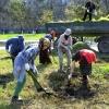 2200 зеленых насаждений высадили омичи на субботнике