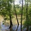 Поиски пропавшей 44-летней омички прекращены