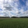 Расширен список особо ценных сельхозугодий Омской области