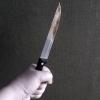 Обозвав сына своего сожителя наркоманом, женщина получила 20 ударов ножом