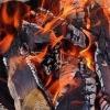 В Ленинском округе Омска в результате пожара погибли люди