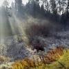 Омские синоптики обнародовали прогноз погоды с 4 по 10 ноября