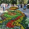 Композиции цветов на омской «Флоре-2018» посвятят разным странам