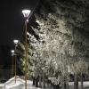 В пятницу в Омской области потеплеет до -8 градусов