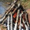 Пятилетний мальчик в Омской области неудачно пожарил семечки на костре
