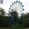 В Советском парке омичи могут позаниматься йогой на новой площадке