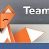 Teammy – место встречи настоящих лис