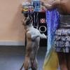 В парке на День омича определят лучшую танцующую собаку