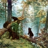 Выставка картин Шишкина откроется в регионе