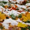 Синоптики снова обещают снег в Омске