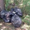 После субботников в Омске остались кучи мусора