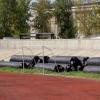 На омском стадионе «Динамо» реконструируют футбольное поле