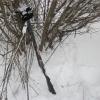 Несовершеннолетний убил и ограбил своего дедушку в Омской области