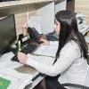 Документы иностранцам в Омске будут оформлять по принципу «одного окна»