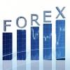 Первые шаги на бирже Форекс: выбор брокера