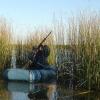 За весенний сезон охоты в Омской области незаконно добыто 26 птиц
