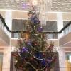 28 и 29 декабря в центре Омска ограничат движение транспорта