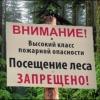 В Омской области ввели запрет на нахождение в лесах