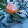 Сильные холода идут в Омскую область, штормовое предупреждение