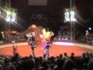 За цирк взялись налоговики