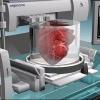 Томские ученые разрабатывают программу 3D-печати органов