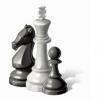 Патриарх омских шахмат