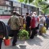 В дачный сезон 2016 года в Омской области будут работать 26 садовых маршрутов