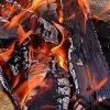 Под Омском после пожара в бане девятилетняя девочка попала в реанимацию
